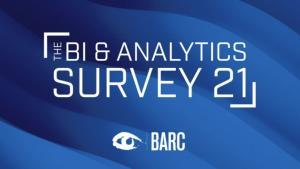 Raport BI & Analytics Survey 21