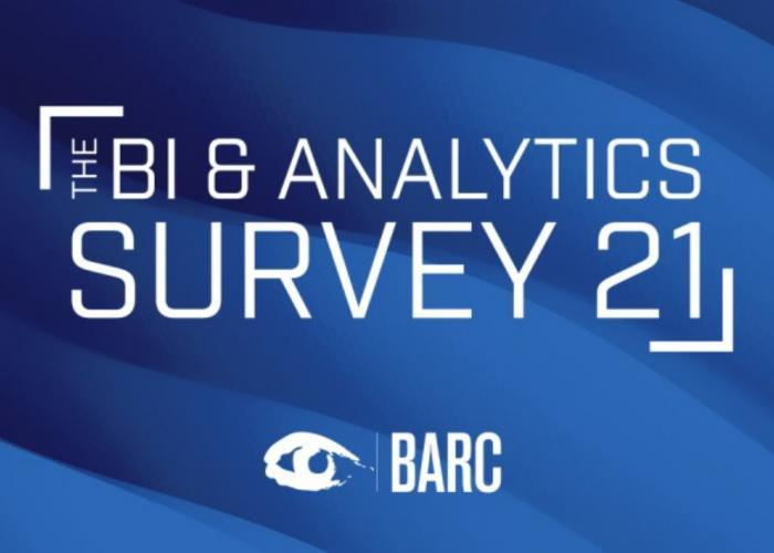 Raport BI & Analytics Survey 21